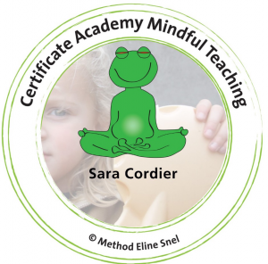 mindfulness, therapies enfants, therapies adolescents, sara cordier, psychotherapy, psychologue, dublin